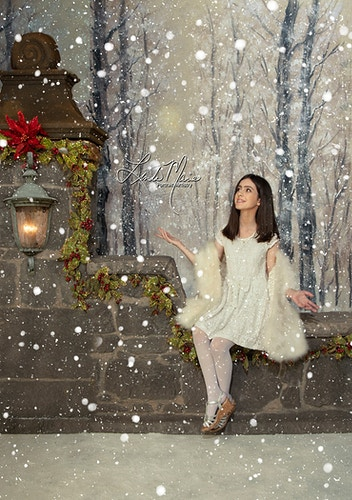 Yuletide Greetings Gallery - Portrait Artistry by Linda Marie | Newborn, Children & Family Photography