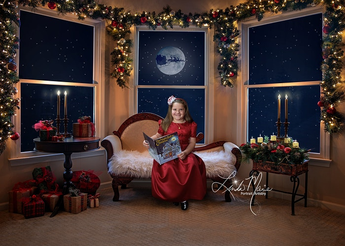 Holiday Rooms Gallery Digital - Portrait Artistry by Linda Marie | Newborn, Children & Family Photography