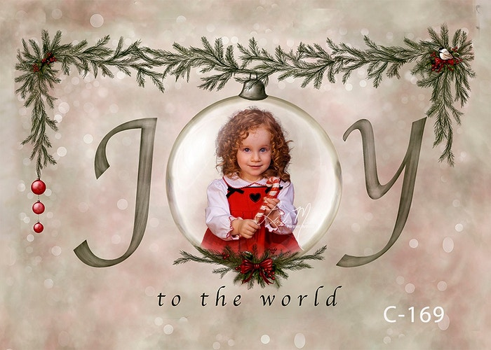 Christmas Captured Digital - Portrait Artistry by Linda Marie | Newborn, Children & Family Photography