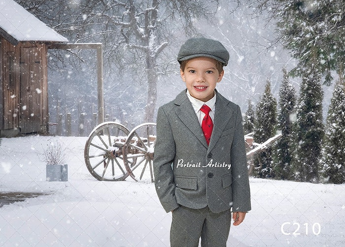 Snow Day Gallery Digital - Portrait Artistry by Linda Marie | Newborn, Children & Family Photography