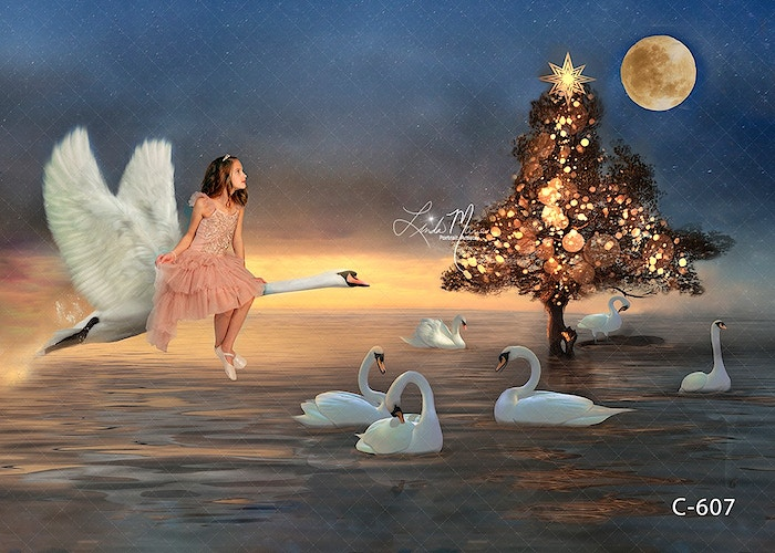 Make Me Magical Gallery Digital - Portrait Artistry by Linda Marie   Newborn, Children & Family Photography