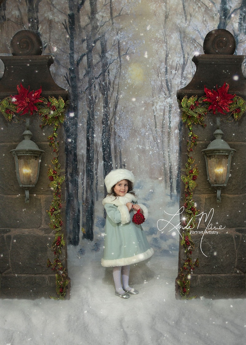 Yuletide Greetings - Portrait Artistry by Linda Marie | Newborn, Children & Family Photography