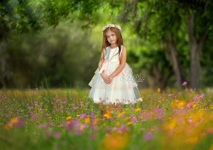 Flower Fields - Portrait Artistry by Linda Marie | Newborn, Children & Family Photography