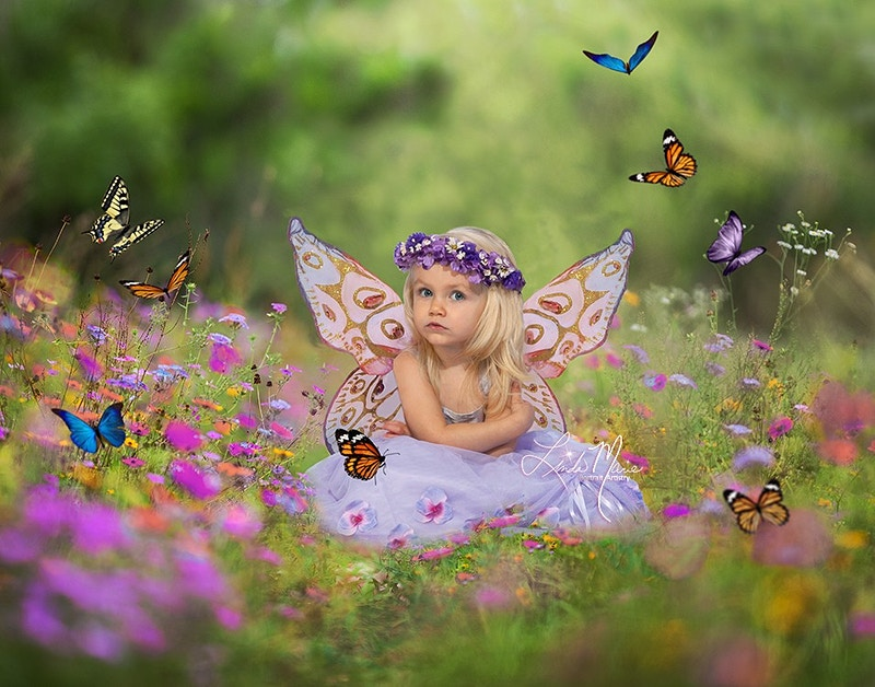 Pixie Hollow - Portrait Artistry by Linda Marie | Newborn, Children & Family Photography