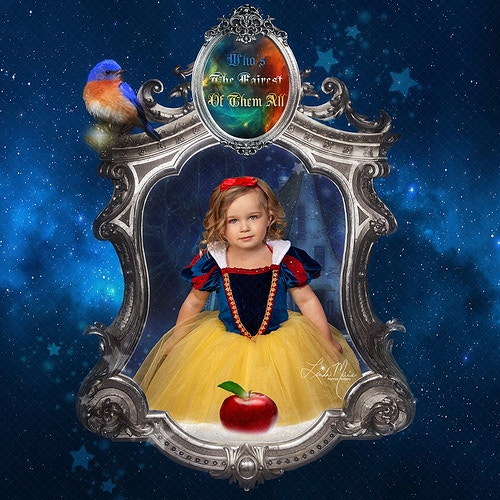 The Princess Collection - Portrait Artistry by Linda Marie   Newborn, Children & Family Photography