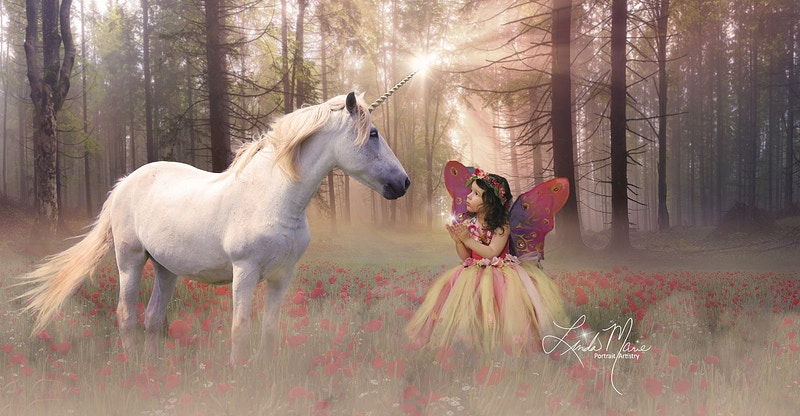 Unicorn Wishes - Portrait Artistry by Linda Marie | Newborn, Children & Family Photography