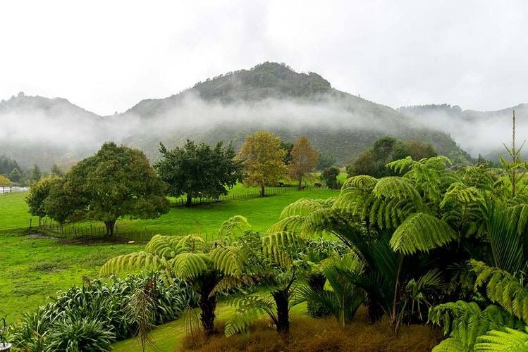 North Island New Zealand - RICHARD McLEISH