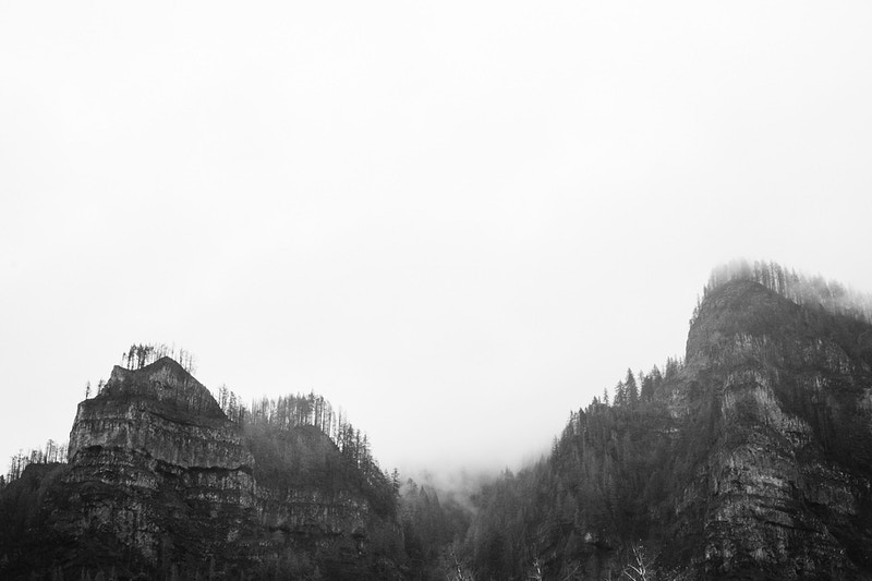 Pnw Black And White - Sam Angel Photography