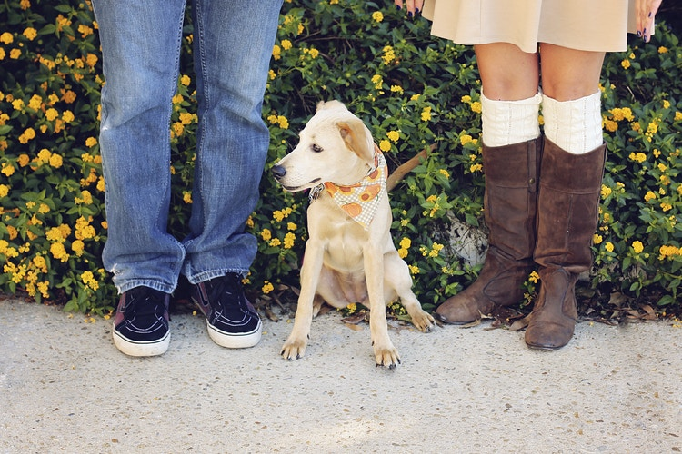 Family - Sarah Conely Photography