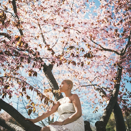 Cherry blossoms maternity - Creative Portrait Photographer :: Portland, Maine - Savannah Daras