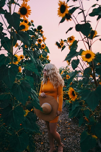 Sunflower garden - Creative Portrait Photographer :: Portland, Maine - Savannah Daras