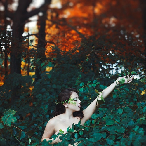Autumnal elegance - Creative Portrait Photographer :: Portland, Maine - Savannah Daras