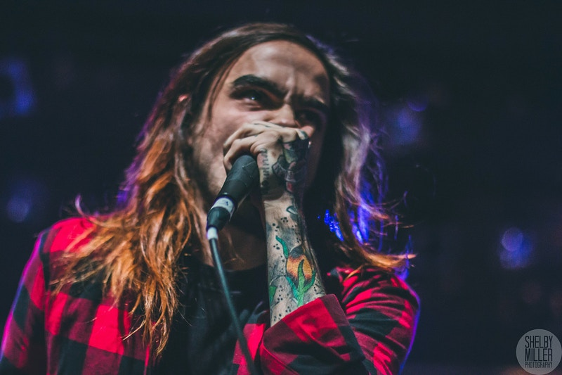 Like Moths to Flames - Shelby Miller Photography