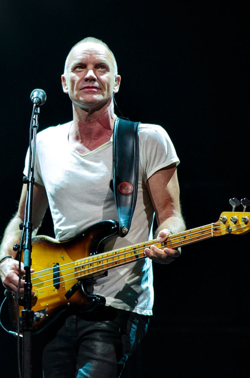 Sting - Suzanne Cordeiro Photography