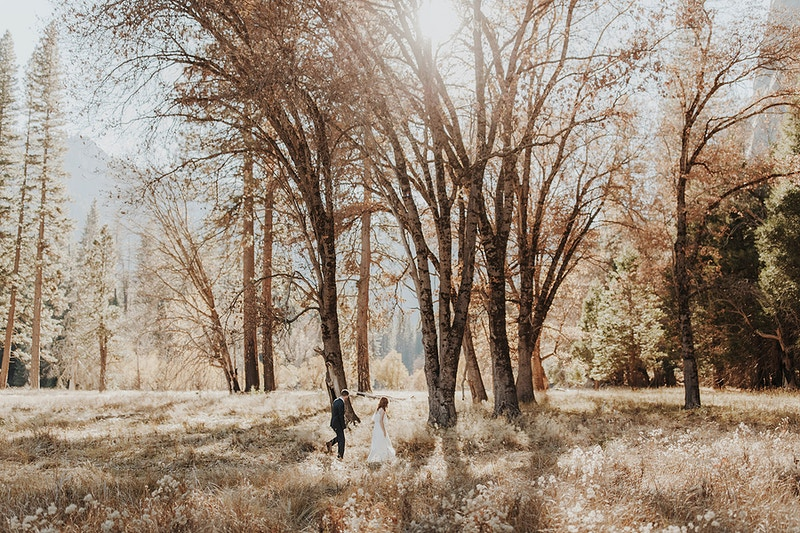 Shawna Mike Engaged In Yosemite Northern California Wedding Photographer - Taylor McCutchan Photography -Northern, California wedding photographer-