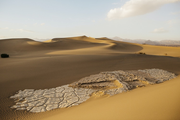 Mesquite Dunes, Death Valley I - Taylor McCutchan Photography -Northern, California wedding photographer-