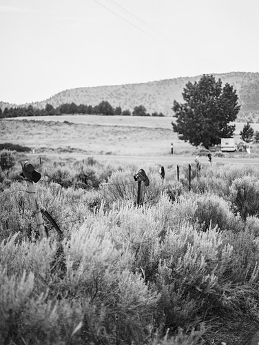 Substance Of The West - Taylor McCutchan Photography -Northern, California wedding photographer-