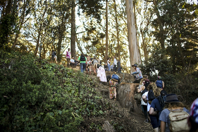 Hardly Strictly - Teddy Anderson