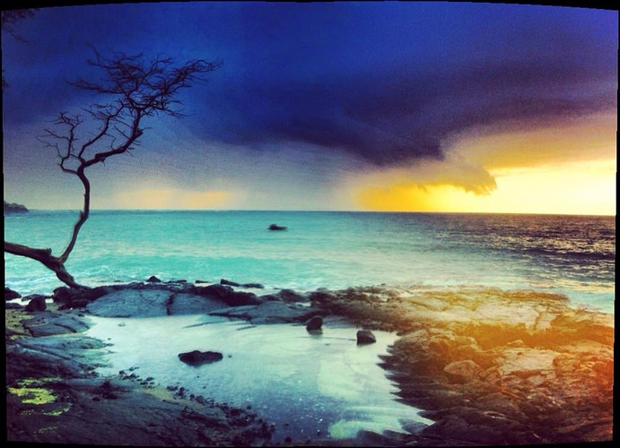 Iphone Ography - Teddy Anderson