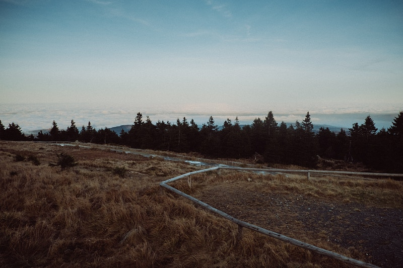 Harz Mountains - Tobias Urban | Photographer