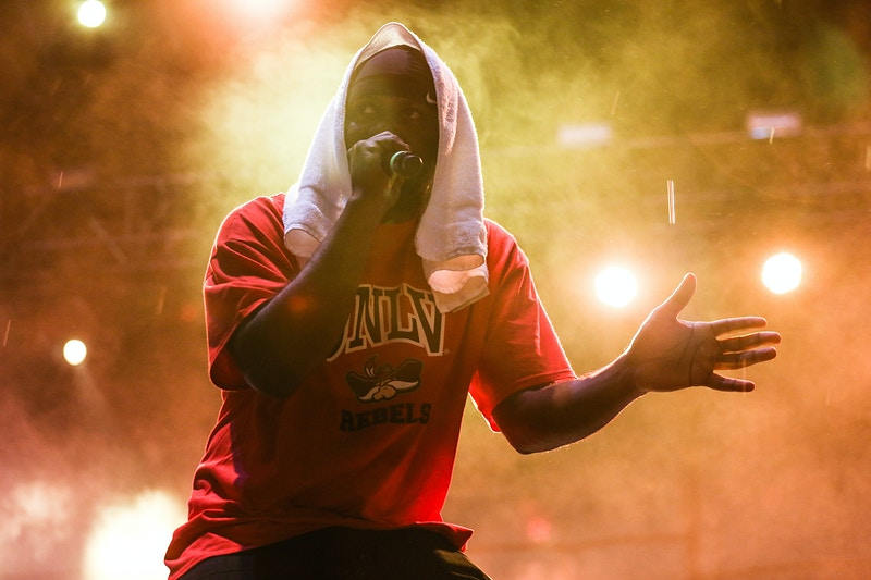 Wu-Tang Clan // Riot Fest - Denver, CO - Tracy Vanessa