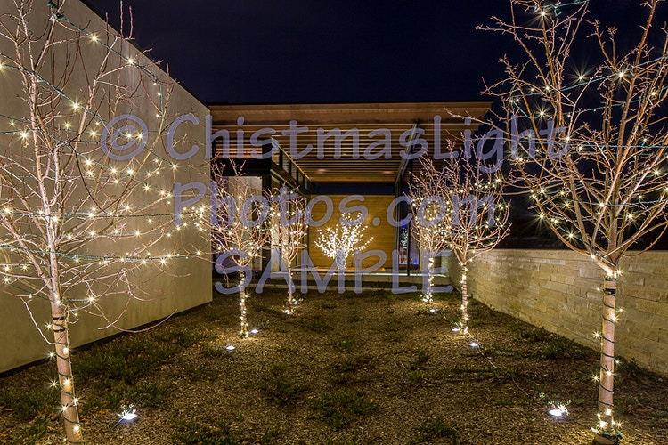 Modern Christmas lights - Vance Brand Photography