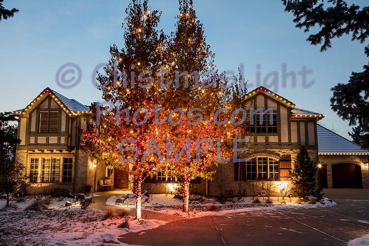 Christmas in red and white - Vance Brand Photography