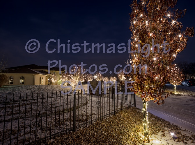24' spaced C9 Christmas Lights - Vance Brand Photography