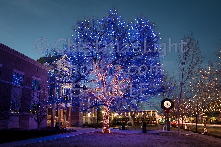 Castle Rock CO town square Christmas Tree - Vance Brand Photography