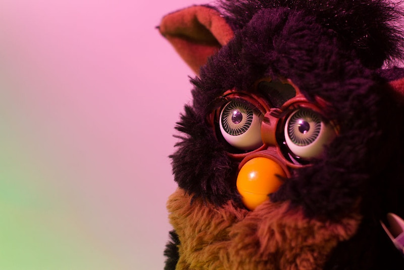 Furby Portrait - Whitley Stratton Photography