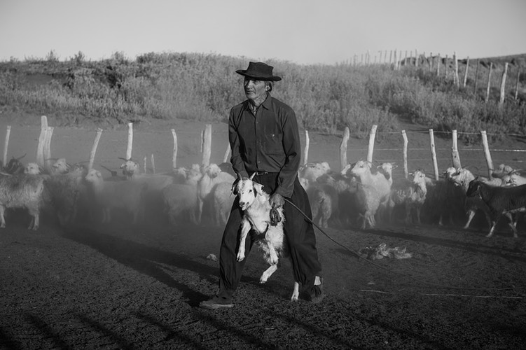 The Argentine Gaucho - Yve Assad Photography