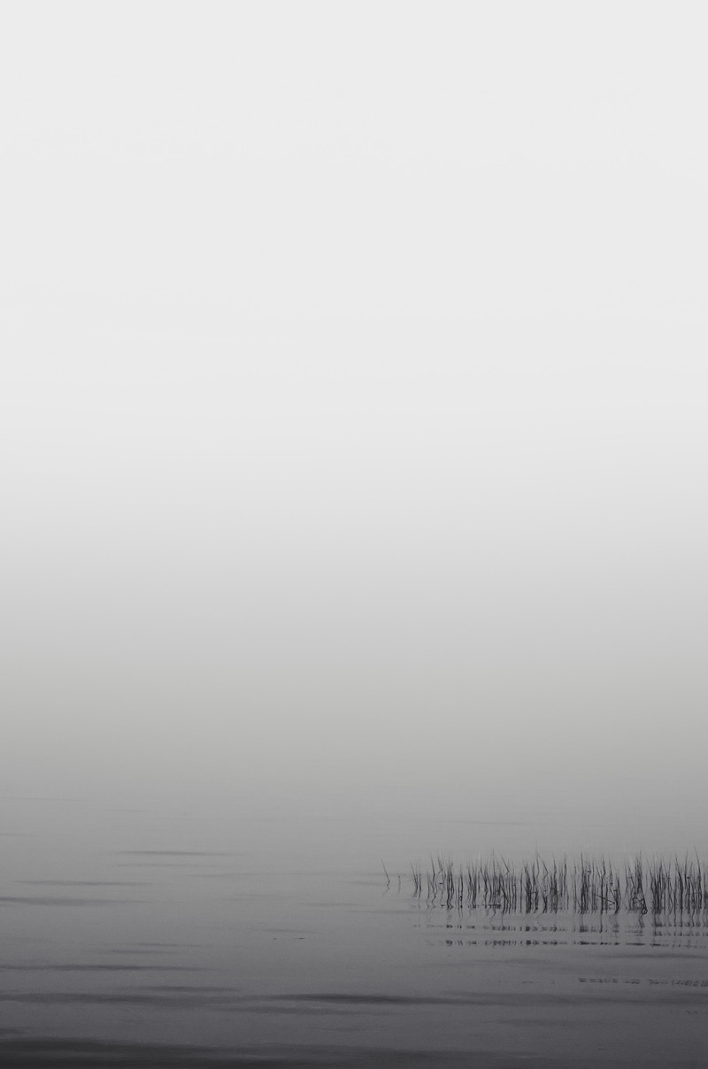 Minimal Visibility No. 1 - Zak Collins // Charleston Fine Art Photography