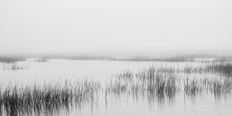 Morning on the Intracoastal - Zak Collins // Charleston Fine Art Photography