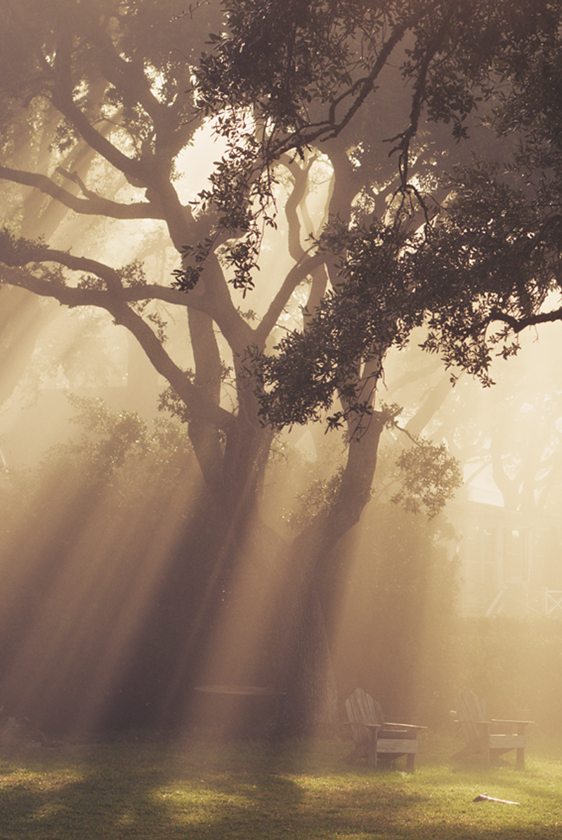 Morning in Old Village - Zak Collins // Charleston Fine Art Photography